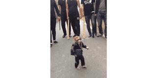 Smoking Gangster Monkey Music Video