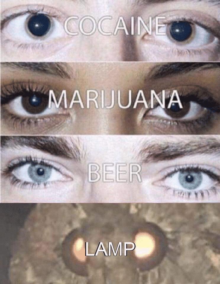 Cocaine, Marijuane, Beer, Lamp
