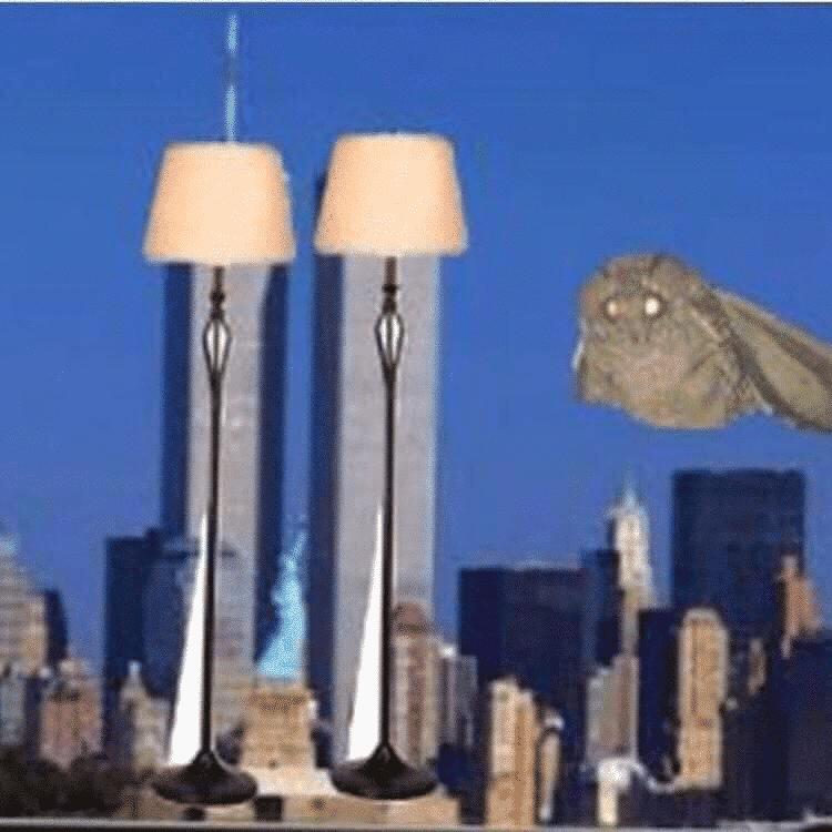 Twin Towers New York Moth Meme