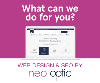 Neo Optic Website Design in Norwich