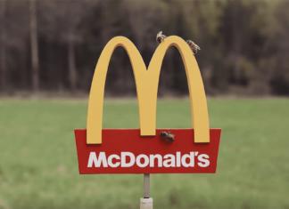 McDonalds McHive Bee Hive
